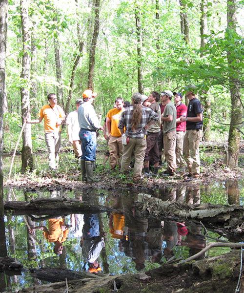 Forestry Field School participants