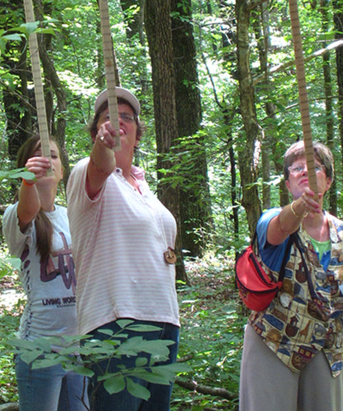 Using Biltmore sticks as part of the Teachers Conservation Workshop